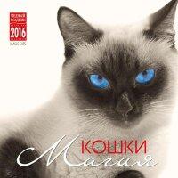 """Календарь на 2016 год на спирали """"Магия кошки"""" (КР23-16019)"""