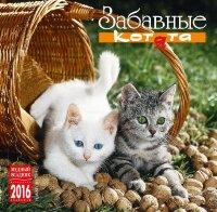 """Календарь на 2016 год на скрепке """"Забавные котята"""" (КР10-16108)"""