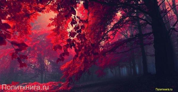 Кружка. Лесной пейзаж. №5