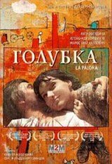 DVD. Голубка